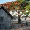 Photo 19: In Jambiani, Sansibar 2008  © Werner Mansholt