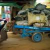 Photo 13: Männer schieben einen Karren mit Holzkohle in Kyaiktho, Burma_Myanamar, 2012 © Werner Mansholt
