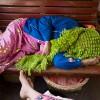 Photo 14:  Schlafende Frauen in der Holzklasse im Zug nach Hsipaw, Burma_Myanamar, 2012 © Werner Mansholt